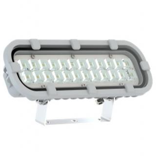 Светодиодный светильник Ex-FWL 14-28-50-D60